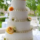 130x130 sq 1358896010918 beautifuleleganceweddingcake