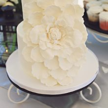 220x220 sq 1358895599063 largeflowerweddingcake