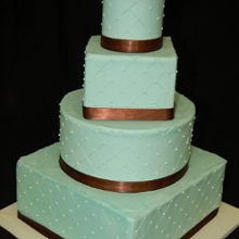 220x220 sq 1358895630568 tiffanyweddingcake