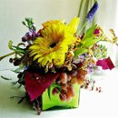 130x130_sq_1247240398998-bloomberg2medium
