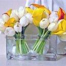 130x130 sq 1247240422482 bloombergevent2medium