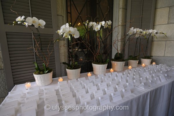 photo 48 of Weddings by Debra Thompson LLC