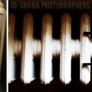 130x130 sq 1295069278317 003brooklynbotanicgardenweddingohanaphotographers