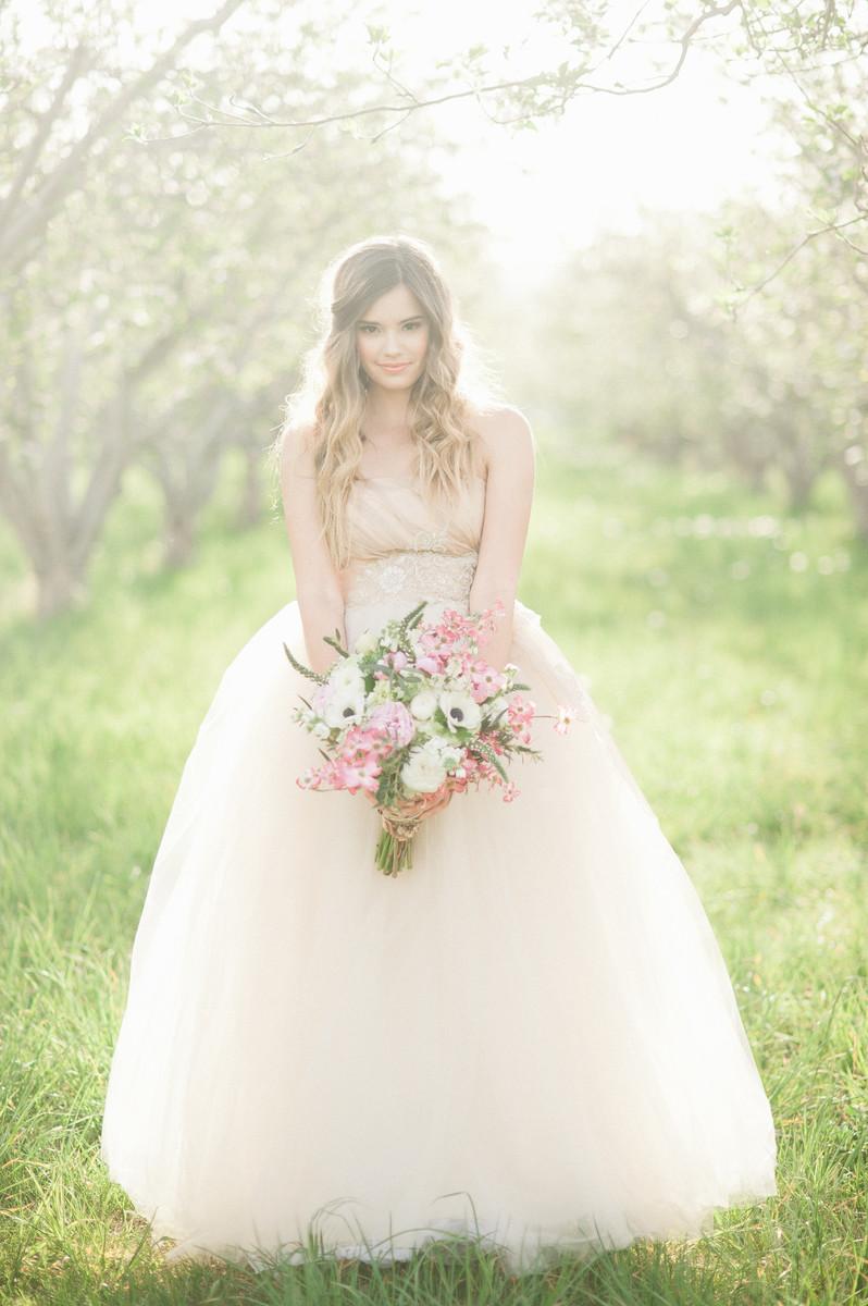 Laneige bridal tux dress attire boise id for Wedding dresses idaho falls