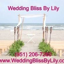 Wedding Bliss By Lily