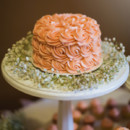 Cake: Ida's Cupcakes