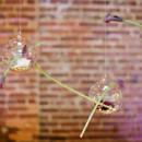 Venue:King Plow Art Center  Event Planner: Lauren Lambert ofMy Simply Perfect Weddings & Events  Floral Designer:Michelle Leyden  Caterer/Rentals:Bold American Events