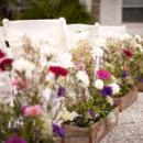 Venue:The Island House  Floral Designer:Local Roots Florist