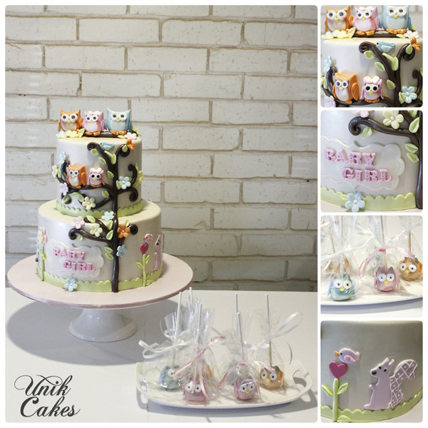 600x600 1414180778761 owl themed baby shower cake and cake pops