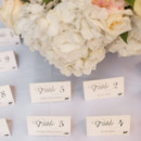 Venue: Ernest Hemingway House and Museum  Event Planner: Anna Morawski  Invitations: Wedding Paper Divas  Floral Designer: Mama Flowers, Inc.  Rentals: Eventfully Yours