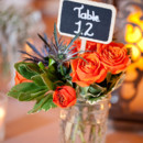Reception Venue/Caterer/Cake:HollyHedge Estate  Event Planner:Simply Sunshine Events  Floral Designer:Newtown Floral Company