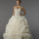 Danielle Caprese 113073 This ball gown features a sweetheart neckline with a natural waist in chiffon and beaded embroidery. It has a chapel train.