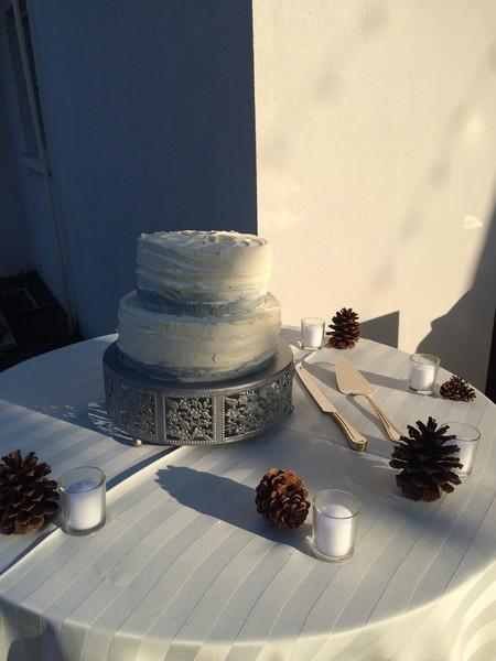 1461582575116 Image Tampa wedding cake