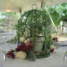 220x220 sq 1449203042668 weddings nelle mcleod 9