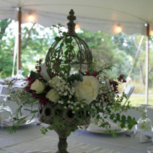 220x220 sq 1449203054079 weddings nelle mcleod m