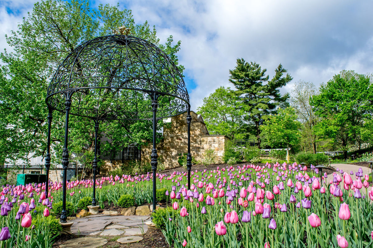 Pittsburgh Botanic Garden Venue Oakdale Pa Weddingwire