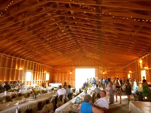 Y Knot Barn And Event Center Pony Mt Wedding Venue