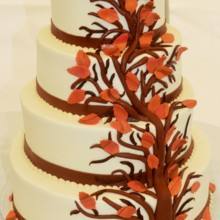 220x220 sq 1421095020286 leaf wedding cake