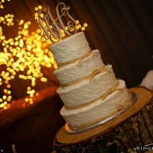 220x220 sq 1421096469270 wedding cake holly