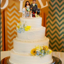 220x220 sq 1421096495972 wedding cake