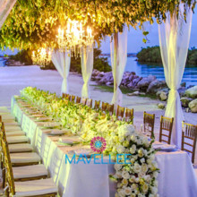 220x220 sq 1487191311441 jeanene y aaron cancun wedding 159