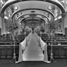 Geedee Weddings Photography Prospect Heights Il