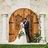 48x48 sq 1517830230 bd92e4da67e2efbb bakers ranch   wedding venue  rustic elegance  16