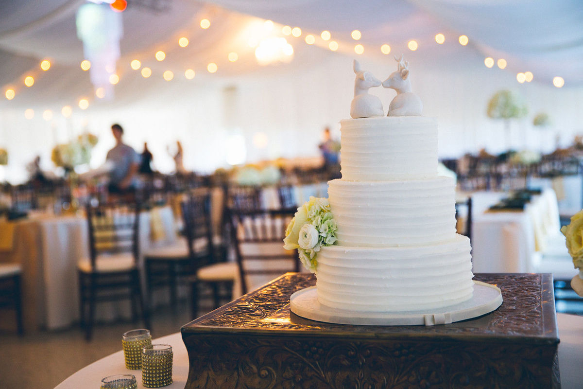 wedding cakes bowness on windermere momenta weddings videography orlando fl weddingwire 23933