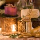 Ceremony Venue: Humphrey Memorial Chapel  Reception Venue/Caterer:The Delafield Hotel  Cake: Margeaux Chudy