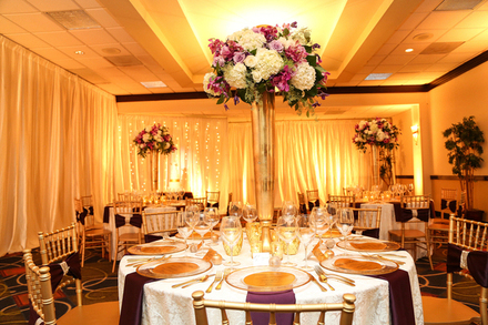 Fort myers wedding rentals reviews for rentals exclusive affair party rentals junglespirit Images