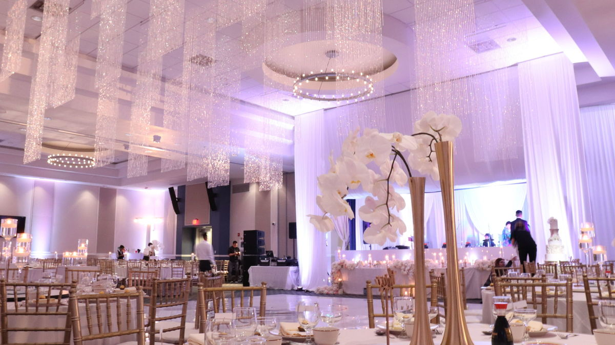 Miami wedding decor lighting reviews for 98 decor lighting ld events decor junglespirit Choice Image