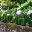 130x130 sq 1302806850041 bottles