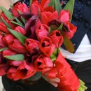 130x130 sq 1302806961744 tulips