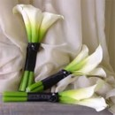 130x130 sq 1384880304623 large calla bouquet