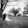 96x96 sq 1429813672270 wedding photo on course