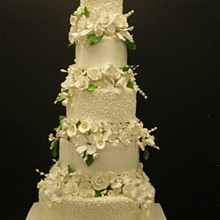 220x220 sq 1329060702198 5tierwhiteweddingcakewith4separations2.jpg