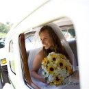 130x130_sq_1337227245413-bride