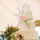 Ana Parzych Custom Cake Extra tall round cake tiers finished in ivory tinted fondant embellished with over-sized sugar cafe au lait dahlia, chocolate branches and brushed embroidered leaves.