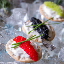 220x220 sq 1447955007605 2015 catering menuvodka caviar ice bar10