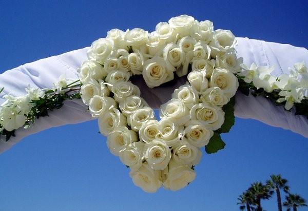 Just For Fun Flowers Flowers Lake Balboa Ca Weddingwire
