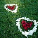 130x130 sq 1255642658026 rosepetalshearts