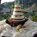 130x130 sq 1288645107423 cakeflowers10020