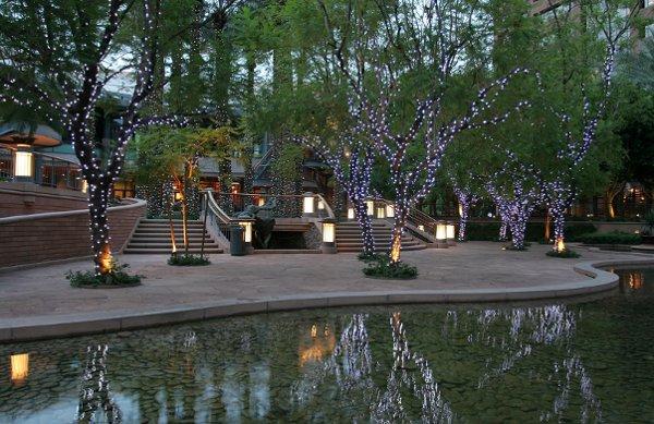 Wedding venues in phoenix az amazing for Affordable wedding venues in az