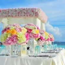 220x220 sq 1500579657 0dd70b8c8455b948 1498940492118 wedding 169193