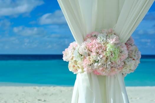 600x600 1498842890627 wedding hydrangas