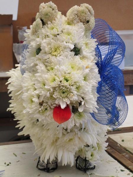 600x600 1509316385043 floral dog 1
