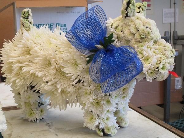 600x600 1509316422491 floral dog 2
