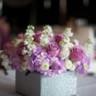 96x96 sq 1500988892720 bing flower box