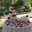 130x130 sq 1292102386566 maiandbobweddingcakes015