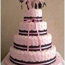 130x130_sq_1232550956218-polkapinkweddingcake